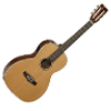 Tanglewood Small Body Guitars