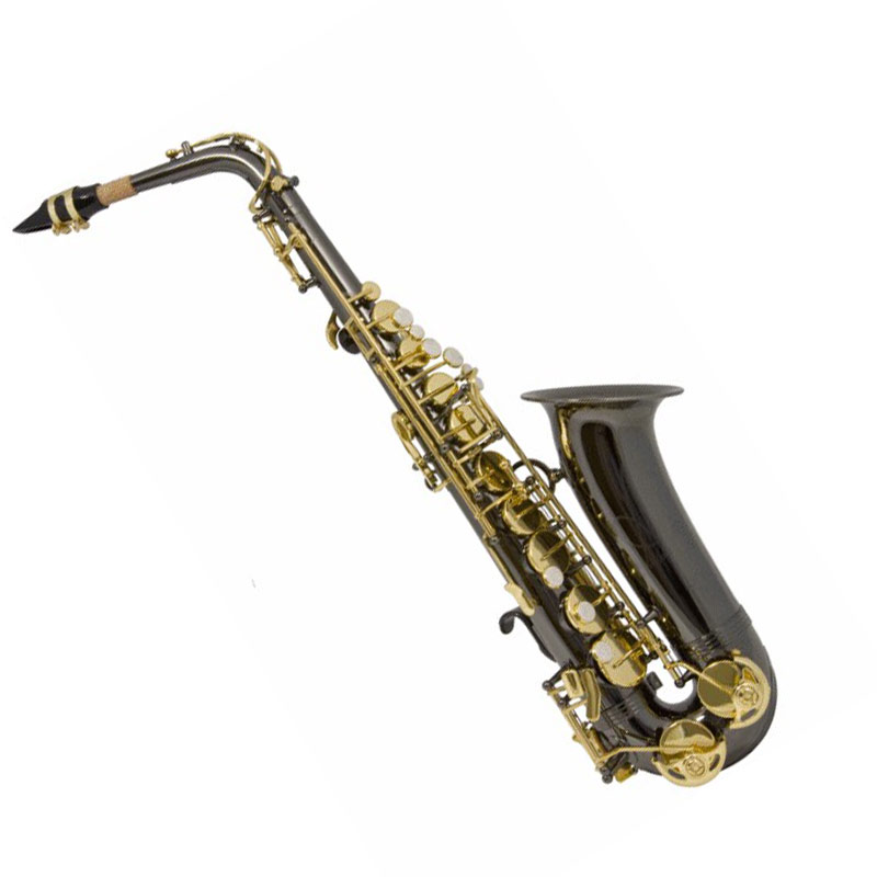 Trevor James Alphasax Eb Alto Saxophone Black and Gold (371ABK)
