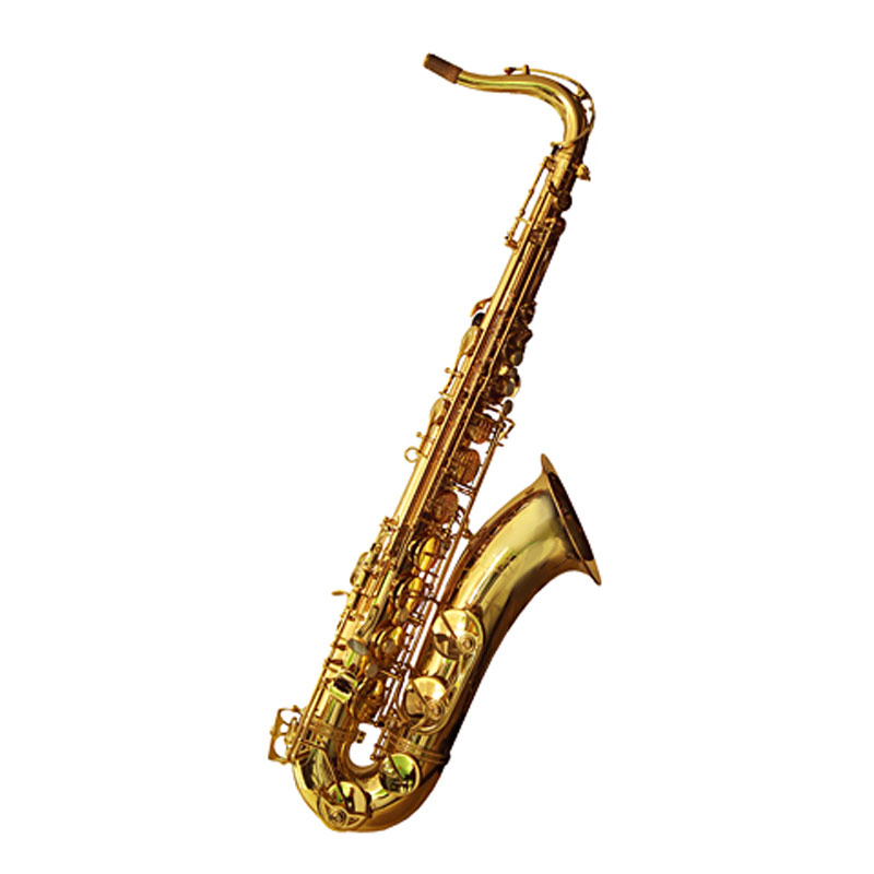 Trevor James SR 384SR-RK Tenor Saxophone