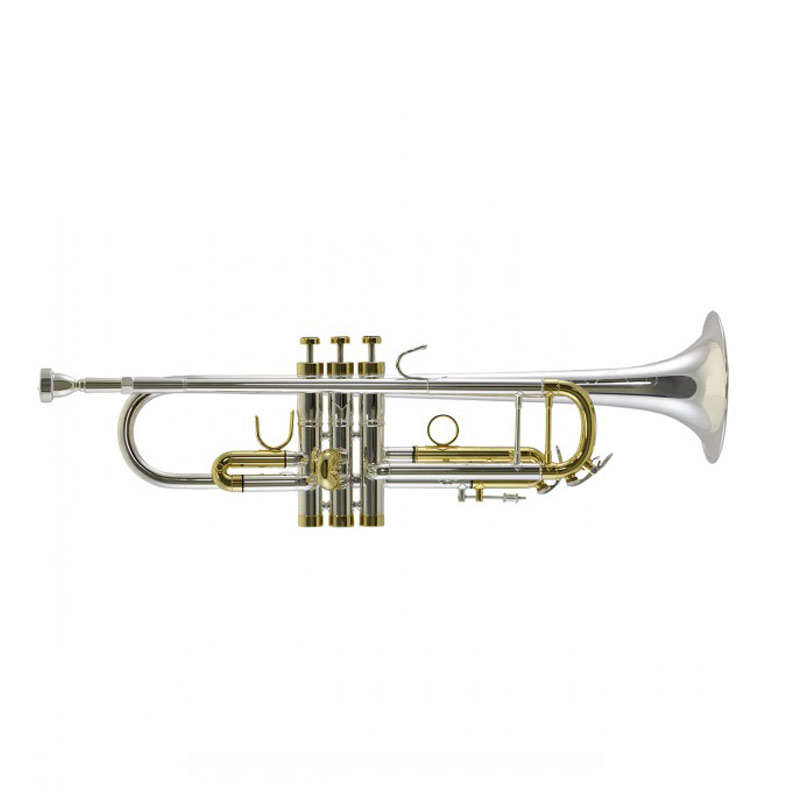 Trevor James Renaissance 15000SG Bb Silver and Gold Plated Trumpet Outfit