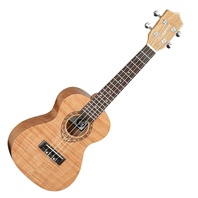 Tanglewood TWT6