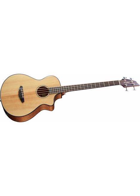 Breedlove Pursuit Bass