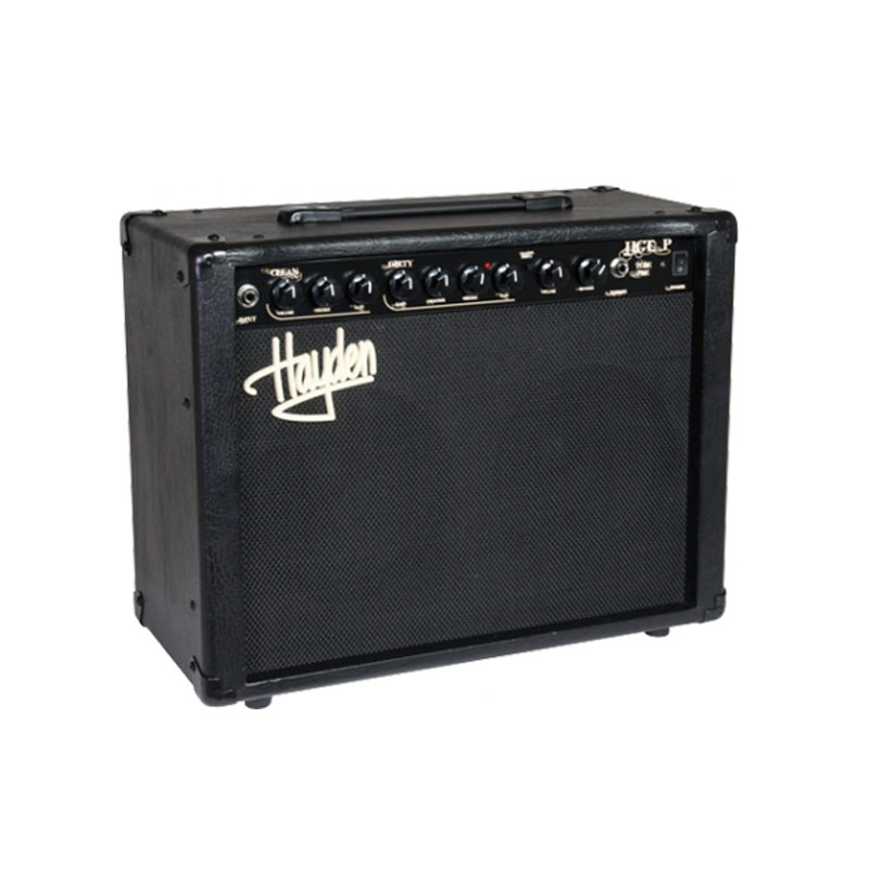 Hayden HGTP20 20W Solid State 2x8in Combo Amplifier