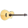 Breedlove Discovery Concert Guitar
