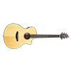Breedlove Pursuit Concert