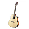 Breedlove Pursuit Dreadnought Ebony Guitar
