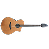 Breedlove_Solo 12 String Guitar