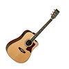 Tanglewood TW15 NS CE