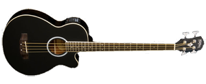 Washburn Acoustic Bass AB5B