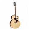 Tanglewood TW155 SS CE